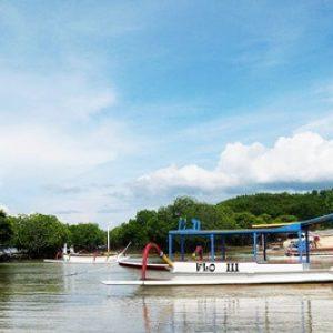 mangrove lembongan