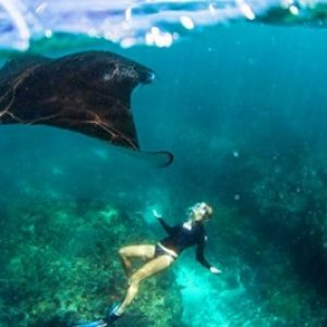 manta-ray-point-penida