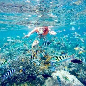 snorkling-nusa-penida