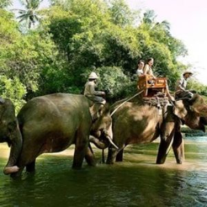 elephant-expedition-river-cross