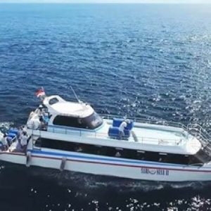 w-transfer-boat-2