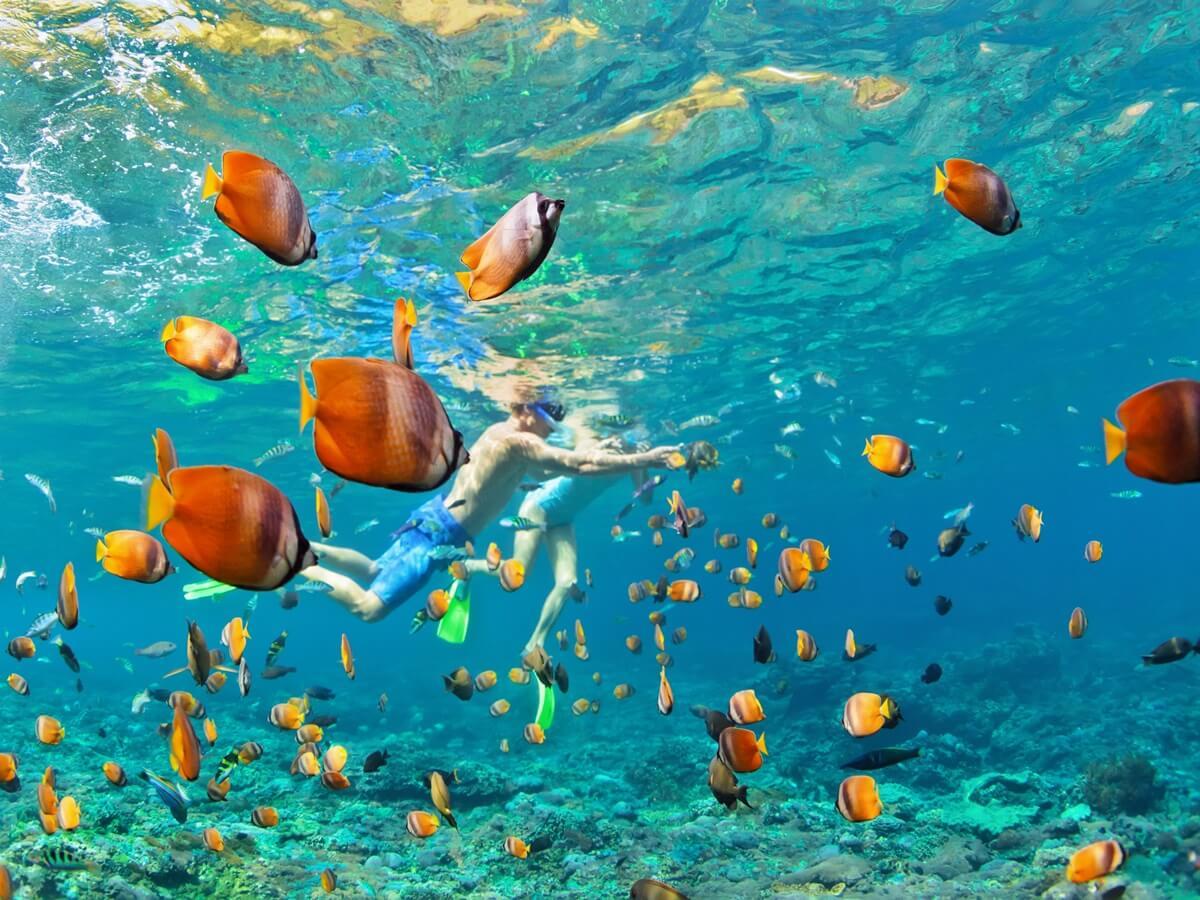 Gili Snorkeling - Traviora