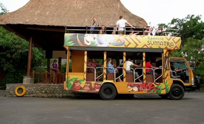 safari car bali zoo